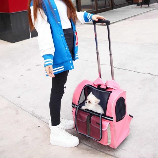 Balo kiêm valy vận chuyển chó mèo, hàng order vui lòng chat trước khi đặt hàng