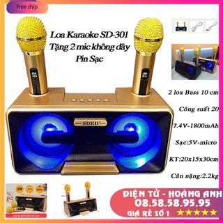 Loa Karaoke SD 301 – SD 306 – SD 309 Kèm 2 Micro Không Dây tích hợp bluetooth 4.0 – usb – thẻ nhớ