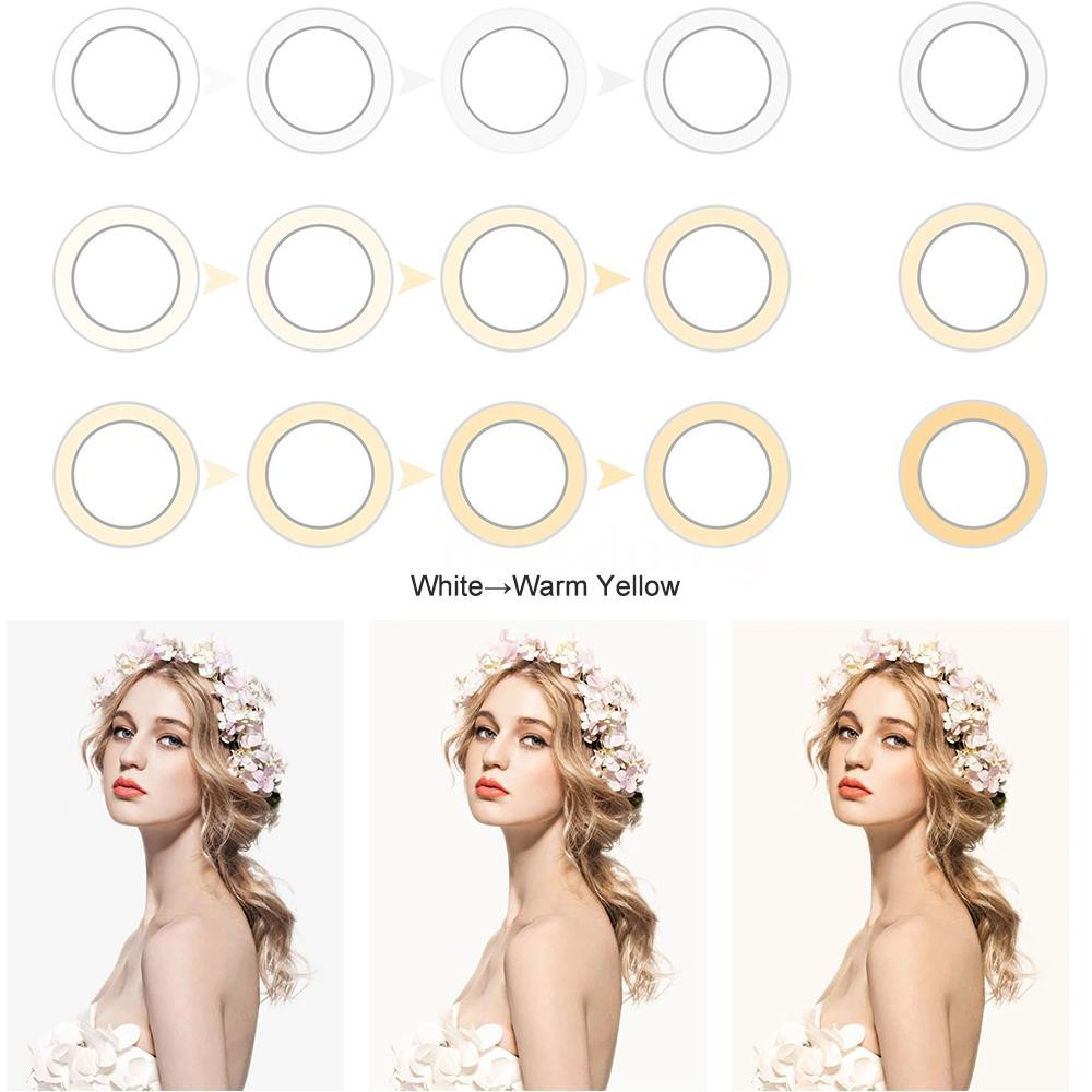 ZOMEI 16 Inch LED Selfie Ring Light Camera Lamp 38W 320pcs Bulbs Stepless Dimmable Brightness 3200-5600K with Tripod Sta