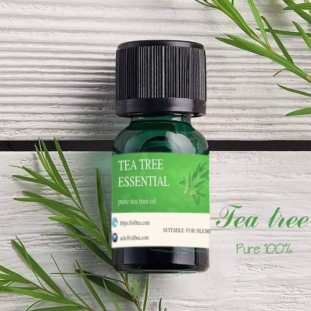 Tinh dầu tràm trà nguyên chất - tea tree oil trị mụn
