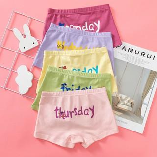 Combo 5 quần chíp đùi trẻ em cao cấp (xuất dư)