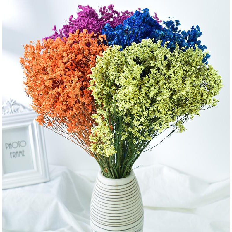 100g hoa khô thủy tinh - hoa cắm lọ đẹp mắt | Shopee Việt Nam