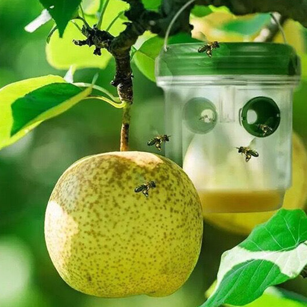 Bẫy Bắt Ong Treo Ngoài Trời Có Thể Tái Sử Dụng