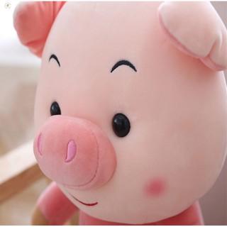 Heo bông Happy Pig Oenpe xinh xắn GIAO HÀNG TOÀN QUỐC
