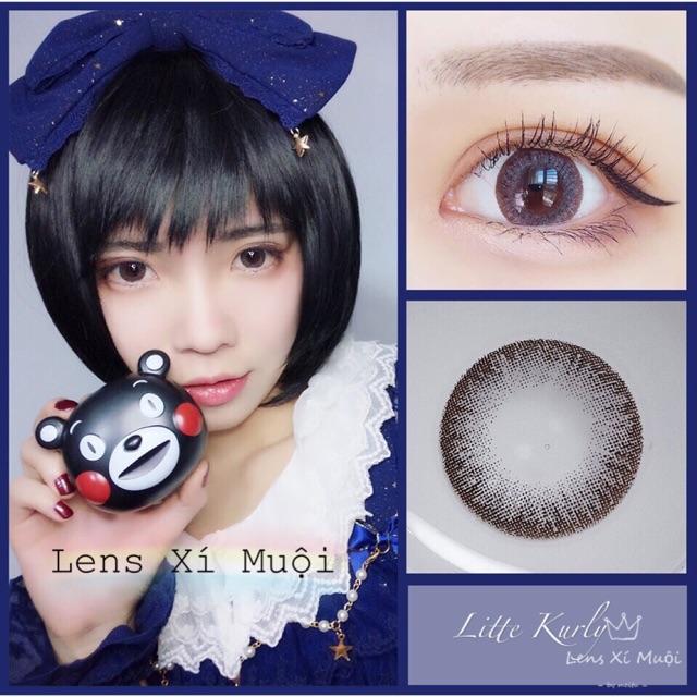 Lens Little Kurly Gray - 0 độ