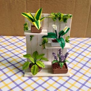 Mô hình thu nhỏ-vườn cây miniature🦕🦕🦕