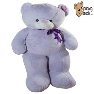 Gấu teddy lông bột màu tím khổ vải 80cm