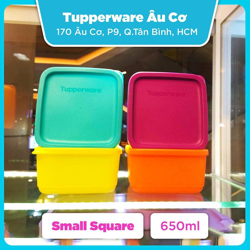 Hộp bảo quản thực phẩm Tupperware Small Summer Fresh - Lẻ và Combo 4 hộp
