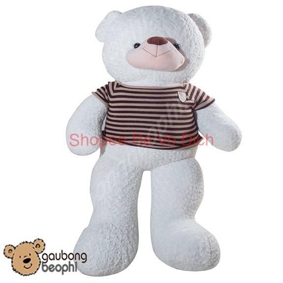 [Hàng Đẹp] Gấu Bông Teddy Bear Mặc Áo Thun, Màu Nâu, Cao 1m8, Khổ 2m, Quà Tặng Đồ Chơi Siêu...