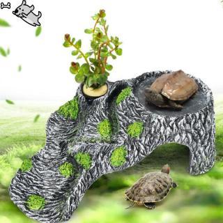 đồ chơi rùa nhựa để bàn