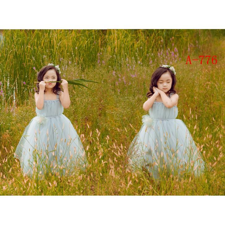 Overseas shipping 2016 new children's flower fairy photography photo princess ga