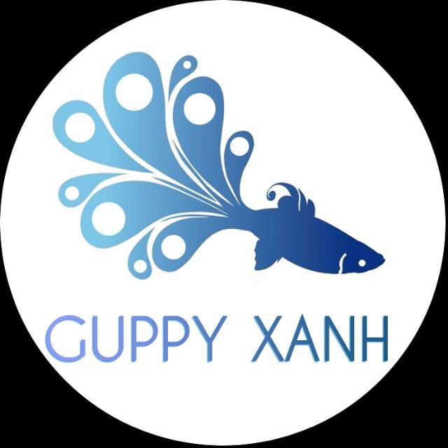 guppyxanhvn