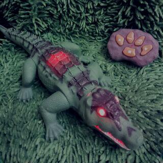 Cá sấu điều khiển từ xa