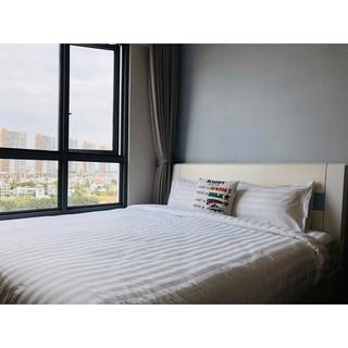 Ga giường chun khách sạn 65% Cotton + 35% Polyesrer (T250) màu trắng sọc (1m6*2m)