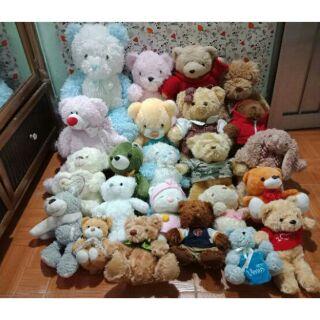 Lô gấu teddy 25 con