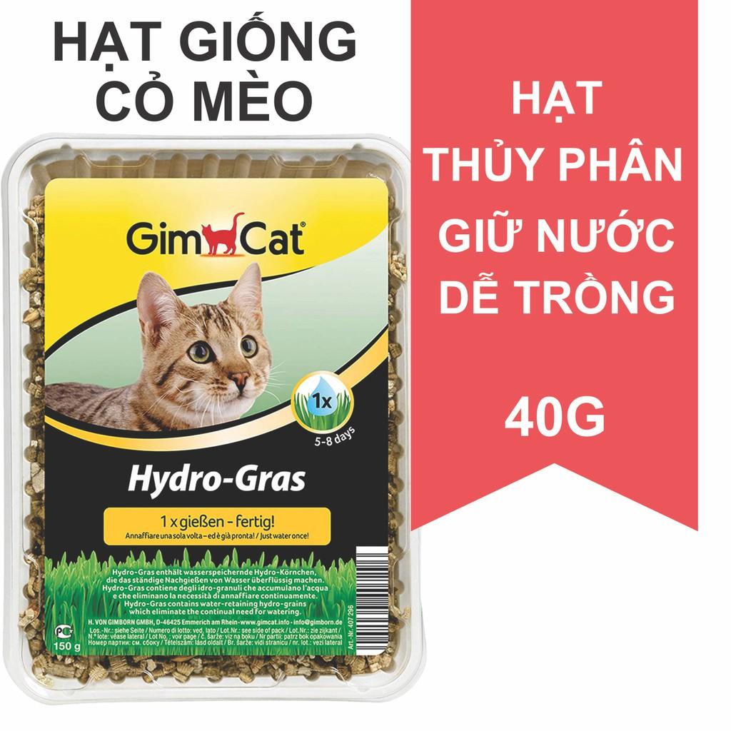 Hạt giống cỏ mèo 40g