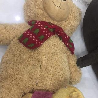 Combo gấu khánh ngân 2