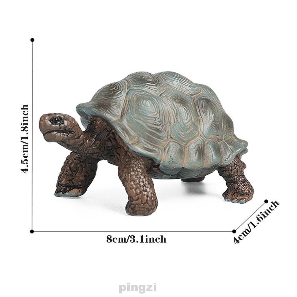 Boys Girls Simulation Realistic Intelligence Development Teaching Aids Cognitive Ability Improve Animal Figurine Toy