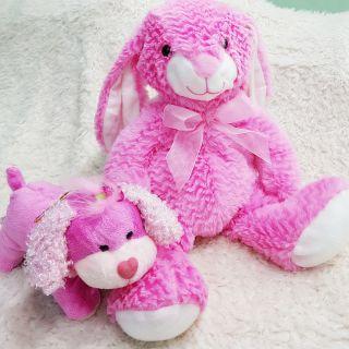 Gấu bông Cặp siêu dễ thương USA