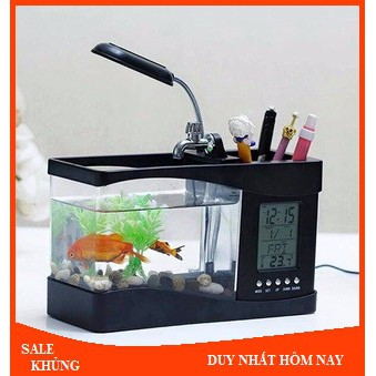 Bể Cá Mini Để Bàn Phong Thủy