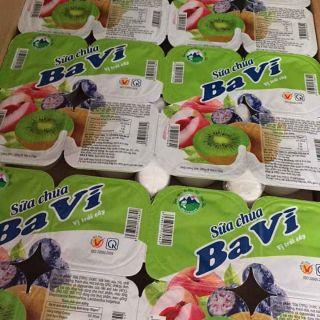 Sữa chua vị hoa quả thùng 48 hộp ×70g