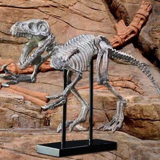 Decor mô hình khủng long 75cm