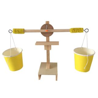 Educational Balance Experiments DIY Physics Teaching Toy for Kids Students