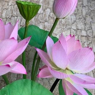 Ống nhựa làm thân hoa sen 1m