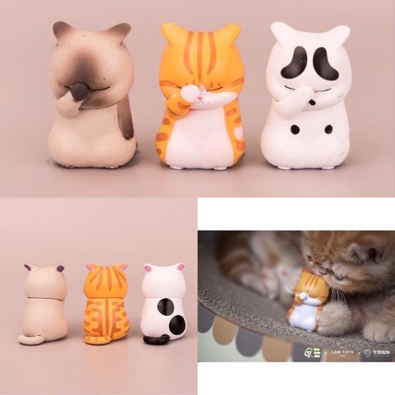 Full set 3 bé mèo đau khổ