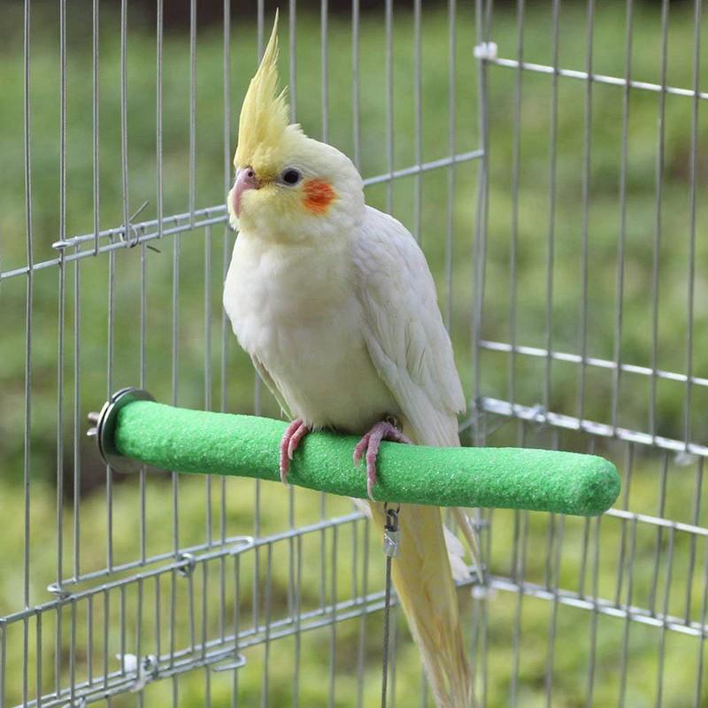 Parrot Perches, 5pcs Bird Perches Budgie Cockatiel Perch Birdca