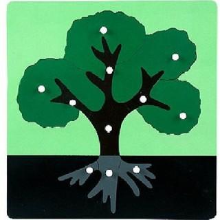 Bộ tranh ghép sinh học Montessori Trang Thư