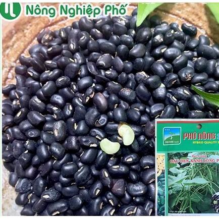 hạt giống đỗ đen vanvan