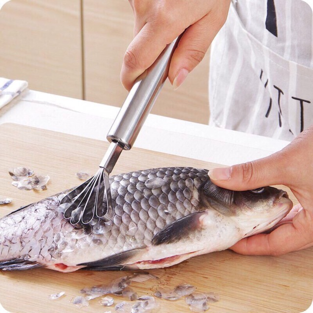 30 Dụng cụ đánh cá nạo dừa loại xịn