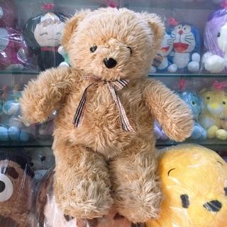 Gấu bông Teddy 60cm