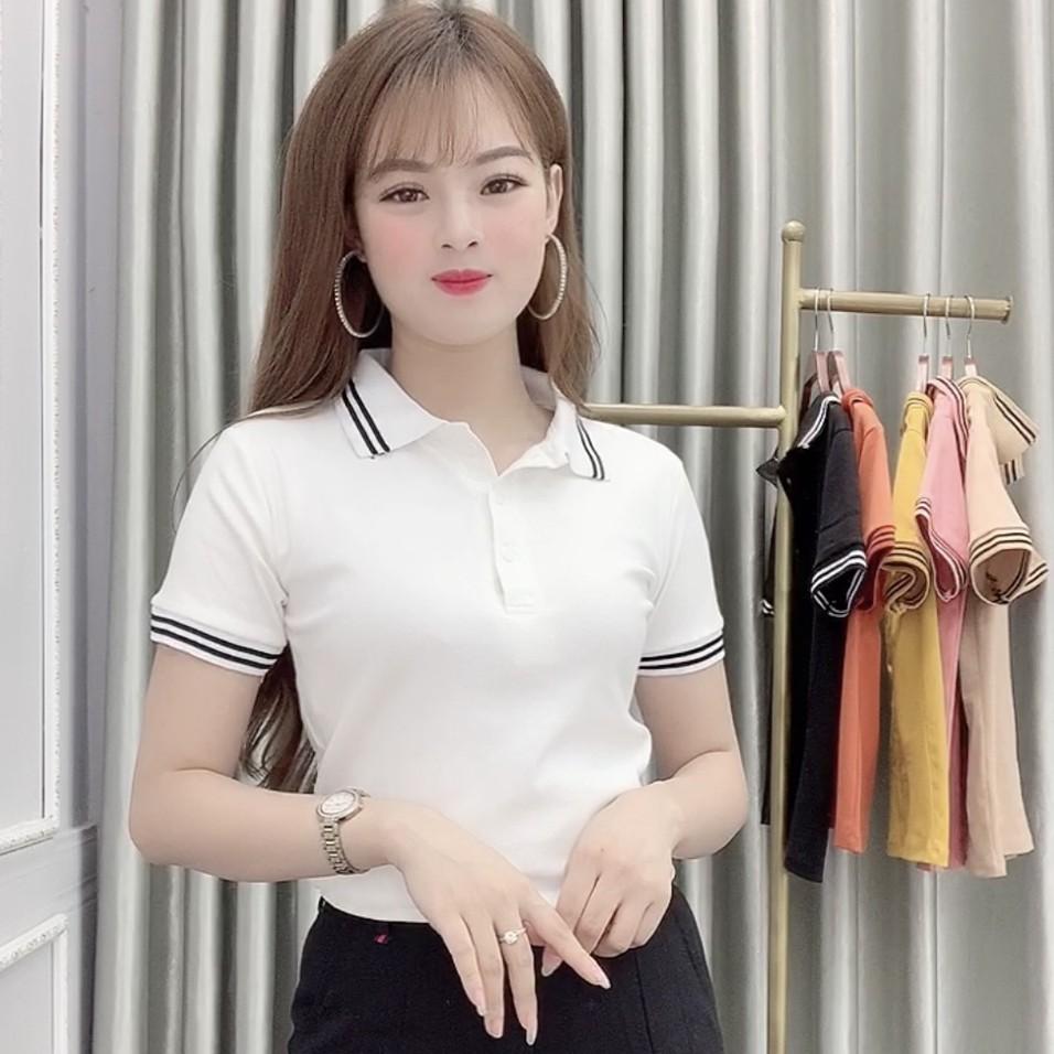 Áo Polo nữ cổ bẻ vải Cotton phom ôm siêu đẹp vải mềm, co giãn, mặc siêu mát - 6 Màu  - A21 (Cam kết y hình)