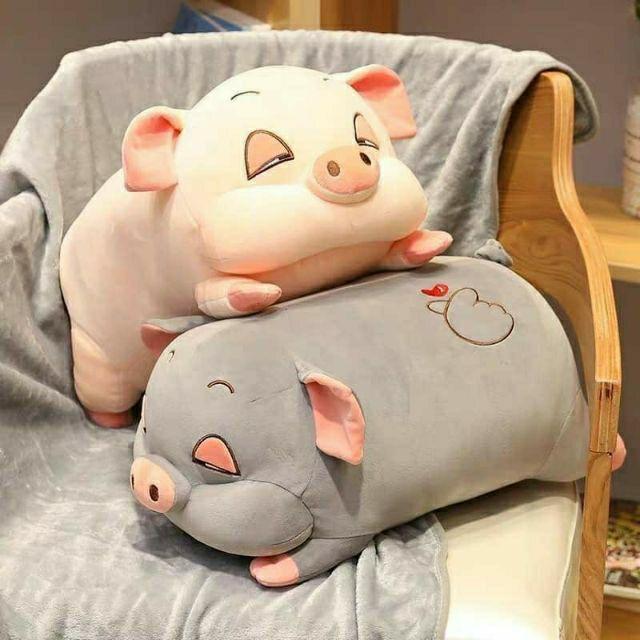 Gấu bông Lợn/Chuột sữa đáng yêu