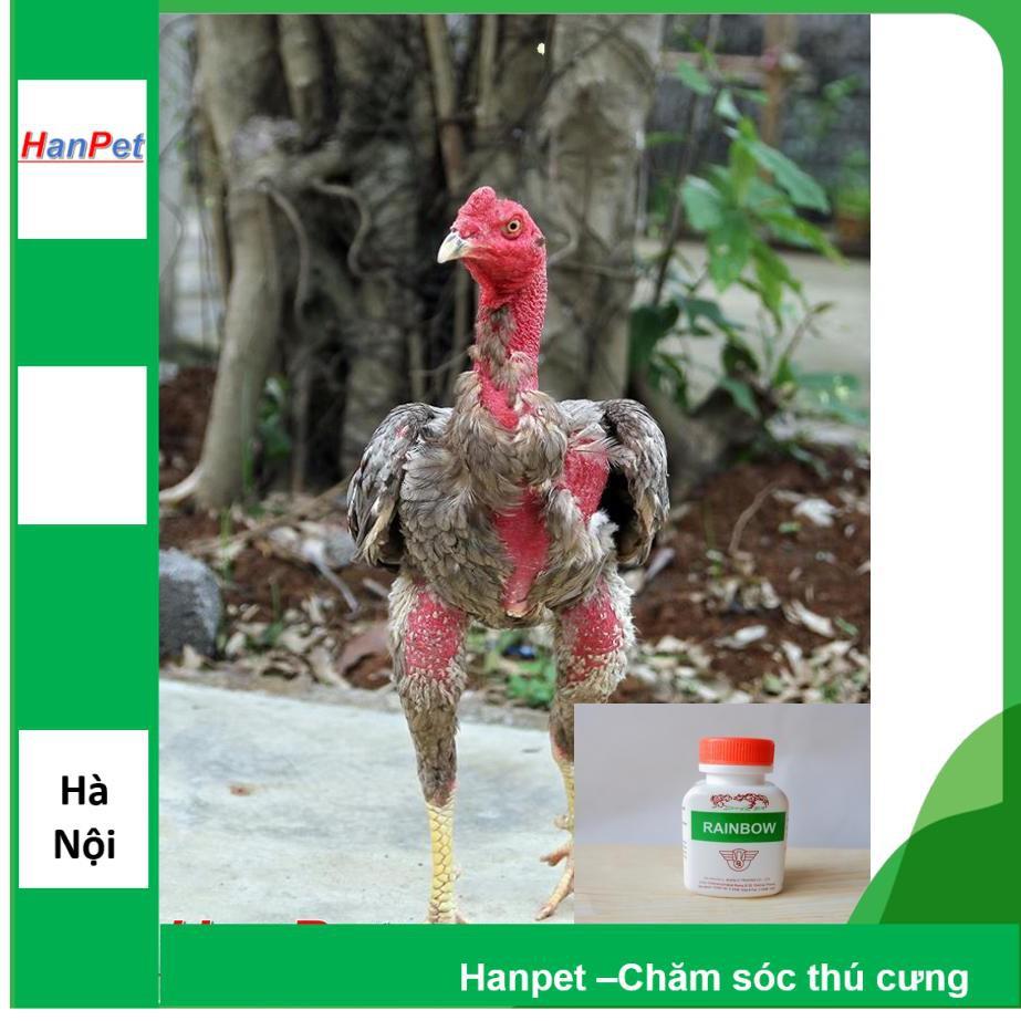 Tăng cơ bắp gà chọi bổ cơ cho chiến kê gà đá RAINBOW dạng uống 100v/lọ- MA