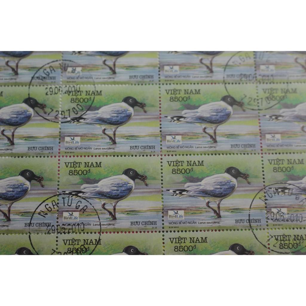 Tem sưu tập Tem CTO Mòng Bể Mỏ Ngắn Việt Nam tờ 25 tem