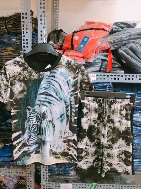 Bộ Quần áo hè nam 3D hổ xuống núi cực mát chuẩn store, chất đẹp