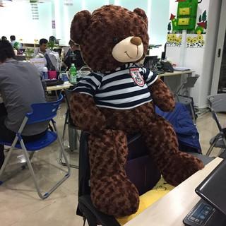 [ GIẢM GIÁ ] Gấu bông Teddy Cao Cấp khổ vải 1m Cao 80m màu Nâu _ Gấu Teddy Xinh