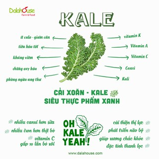 Bột Rau Củ Ăn Dặm Cho Bé Từ 6 Tháng Tuổi Dalahouse - Gói 3g 3
