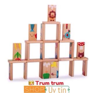 đồ chơi gỗ domino