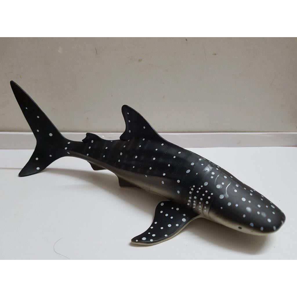 Mô hình cá nhám voi (cá mập voi)