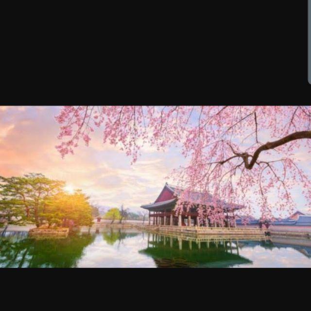 มัดจำทัวร์เกาหลีราคาเท
