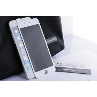 Cường lực chống nhìn trộm, chống vân tay full màn iphone 6 7 8 6Plus 7Plus X Xr XsMax 11 11Pro 11ProMax thumbnail