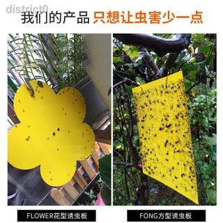 Tấm bẫy côn trùng hai mặt tiện dụng