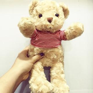 Gấu Teddy mr Bean style