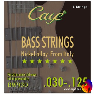 CAYE BW Series 4/5/6 pcs Bass Strings