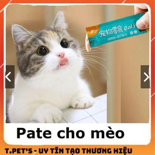 Gel dinh dưỡng dạng ướt, dạng pate snack súp thưởng cho mèo thumbnail