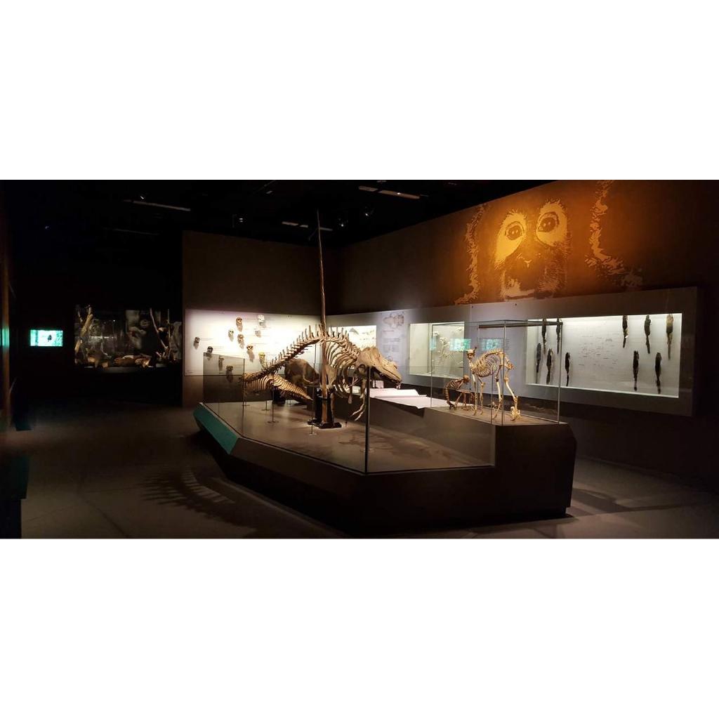 HCM [E-voucher] Vé Lee Kong Chian Natural History Museum Singapore